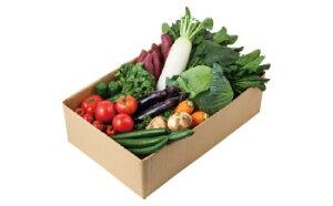 【ふるさと納税】名水流れる曽爾村の5種5品野菜セット〜ご夫婦や小さなご世帯の食べきりサイズ〜