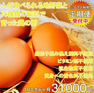 【ふるさと納税】地野菜育ちの平飼いタマゴ「遊鶏卵」18こ6か月セット