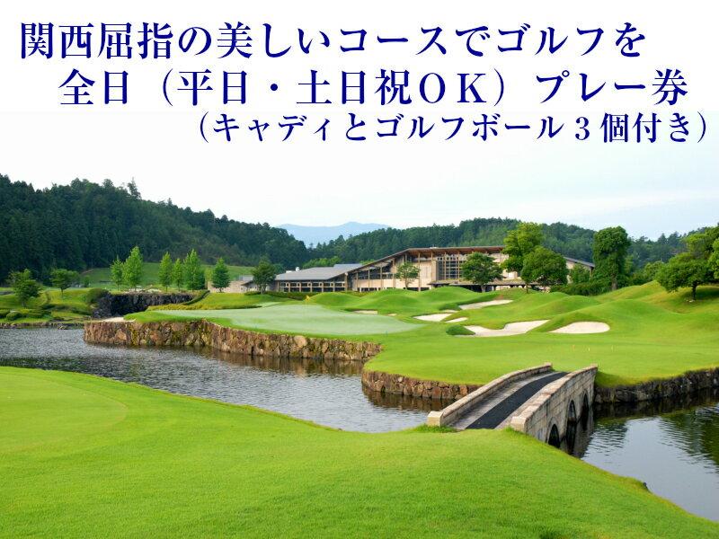 【ふるさと納税】全日ゴルフプレー券