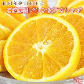 【ふるさと納税】【ご家庭用】希少な国産バレンシアオレンジ 7kg