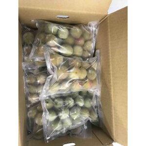 【ふるさと納税】和歌山産 冷凍 南高梅 3kg(500g×6パック)