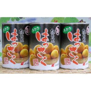 【ふるさと納税】和歌山産手剥き八朔缶詰450g×8缶入り