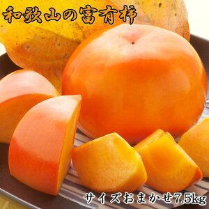 【ふるさと納税】[甘柿の王様]和歌山産富有柿約7.5kgサイズおまかせ※2020年10月下旬〜12月初旬頃順次発送予定