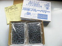 【ふるさと納税】2017年収穫和歌山県産冷凍ブルーベリー1kg