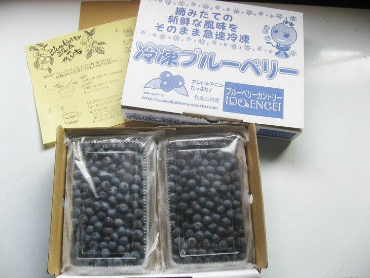 【ふるさと納税】2018年収穫 和歌山県産 冷凍ブルーベリー 1kg