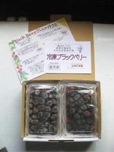 【ふるさと納税】2019年収穫 和歌山県産 冷凍ブラックベリー 1kg