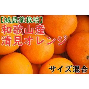 【ふるさと納税】【減農栽培】和歌山産清見オレンジ約5kg(S〜3Lサイズ混合)
