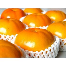 【ふるさと納税】柳フルーツ園の訳あり富有柿 (約5kg)【1077827】