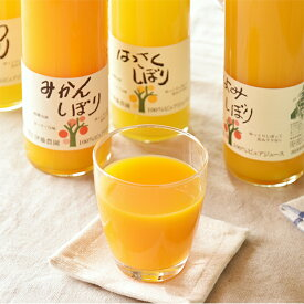 【ふるさと納税】5種みかんジュース大瓶(750ml)9本セット