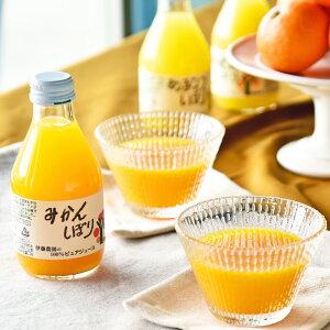【ふるさと納税】100%ピュアジュース10本ギフトセット