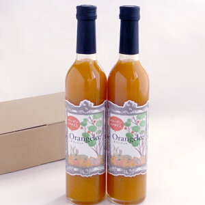 【ふるさと納税】つぶつぶジュレのみかん果実のお酒