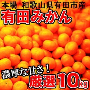 【ふるさと納税】厳選 有田みかん「未来への虹」10kg...