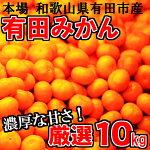 【ふるさと納税】有田みかん未来への虹1月
