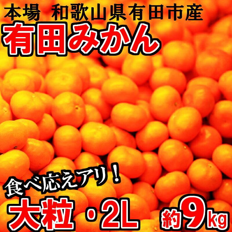 【ふるさと納税】大粒・2L 有田みかん「未来への虹」約9kg 送料無料 産地直送