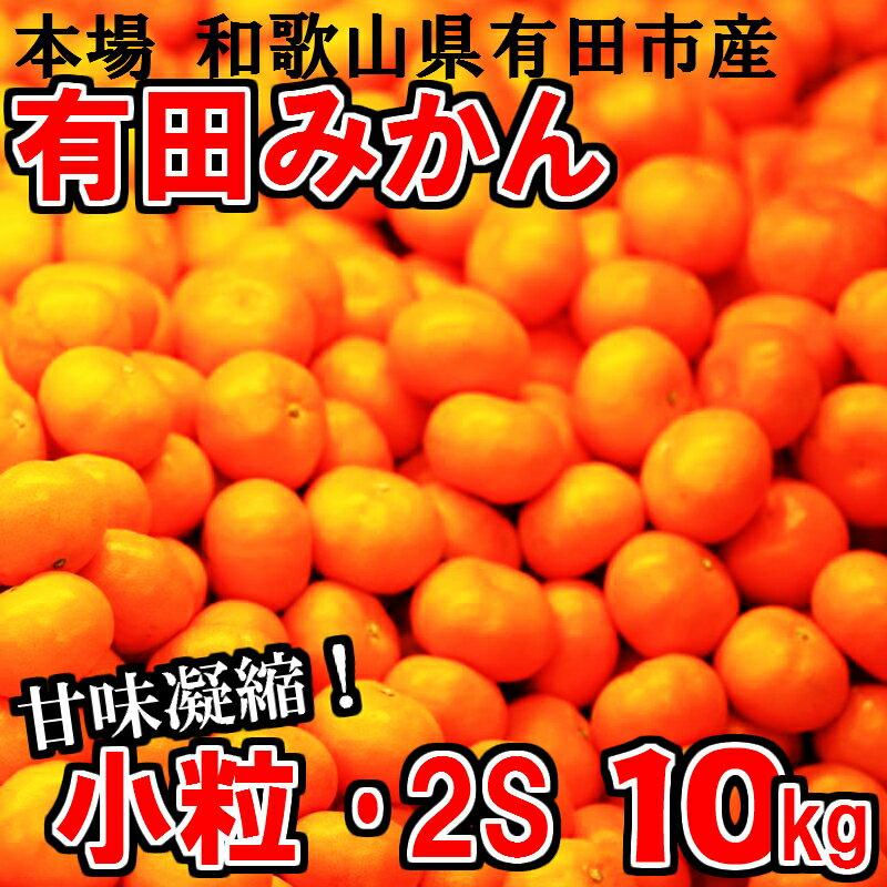 【ふるさと納税】小粒・2S 有田みかん「未来への虹」10kg 送料無料 産地直送