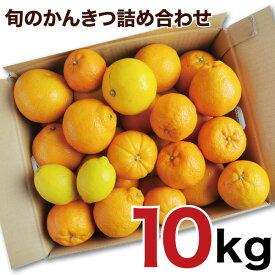 【ふるさと納税】訳アリ 旬のかんきつ詰め合わせ 10kg