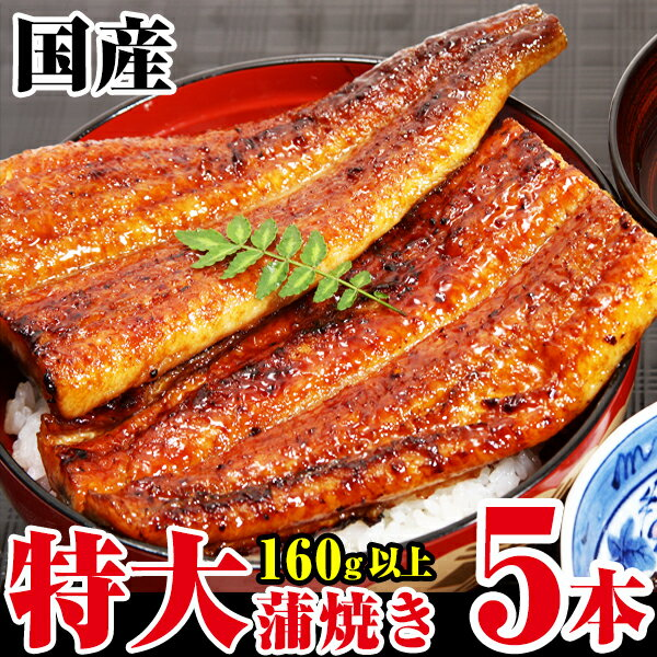 【ふるさと納税】ボリューム満点!特大サイズ国産うなぎ蒲焼き5本セット