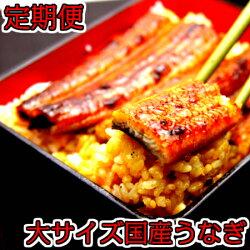 【ふるさと納税】◆定期便◆大サイズ国産うなぎ蒲焼2本セット(6か月お届け)