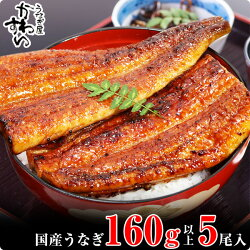 【ふるさと納税】国産うなぎ蒲焼き5本セット