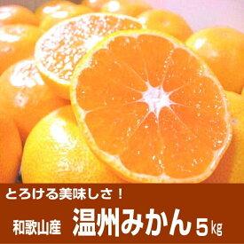 【ふるさと納税】「濃厚な味のとろける美味しさ」温州みかん 5kg