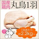 【ふるさと納税】紀州うめどり丸鶏