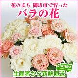 【ふるさと納税】バラの花約25輪花のまち御坊産の薔薇生産者から新鮮直送