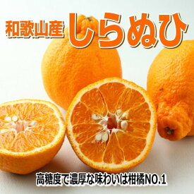 【ふるさと納税】和歌山産 しらぬひ【デコポン】4.5kg 濃厚春みかん