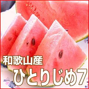 【ふるさと納税】小玉すいか(ひとりじめ7)2〜3玉 和歌山産