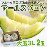 【ふるさと納税】アールスメロン大玉(2玉)とろける食感の夏果実