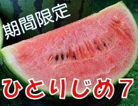 【ふるさと納税】和歌山産小玉すいか ひとりじめ7(2〜3玉)