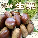 【ふるさと納税】秋の味覚生栗2kg(Lサイズ以上)