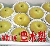 【ふるさと納税】豊水梨4kg(9〜12玉)