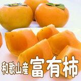 【ふるさと納税】富有柿5kg和歌山産