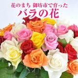 【ふるさと納税】バラの花切り花50本
