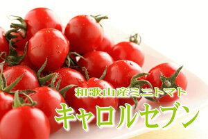 【ふるさと納税】ミニトマト キャロルセブン 2kg【和歌山産】
