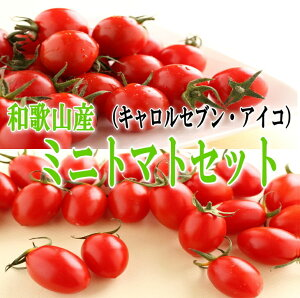 【ふるさと納税】ミニトマトセット【 キャロルセブン・アイコ】2kg 和歌山産