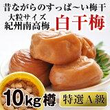 【ふるさと納税】紀州南高梅特選A級白干梅(梅干し)10kg[無添加]