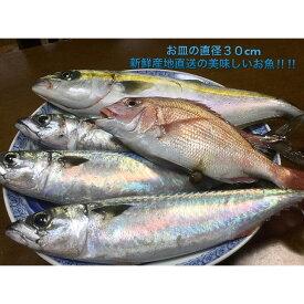 【ふるさと納税】御坊産鮮魚セット 2.5kg 【定期便】(年4回お届け)