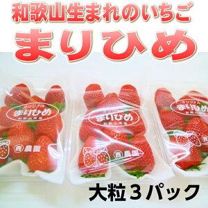 【ふるさと納税】和歌山生まれのイチゴ【まりひめ】大粒3パック
