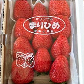 【ふるさと納税】自農園産 和歌山県オリジナルいちご『完熟まりひめ』大粒3パック