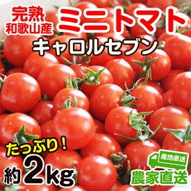 【ふるさと納税】完熟 ミニトマト(キャロルセブン)約2kg トマト農家直送 和歌山県産