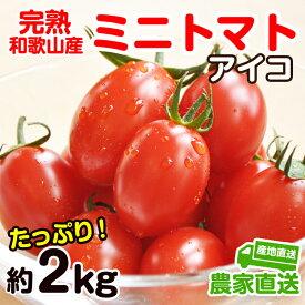【ふるさと納税】完熟 ミニトマト(アイコ)約2kg トマト農家直送 和歌山県産
