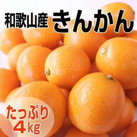 【ふるさと納税】完熟きんかん/金柑 4kg 秀品 Lサイズ以上