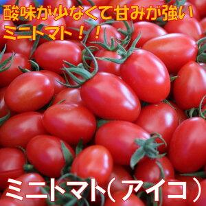 【ふるさと納税】ミニトマト(アイコ)2kg