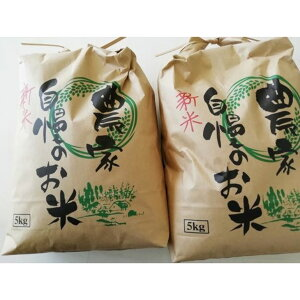 【ふるさと納税】キヌヒカリ10kg(5kg×2袋)