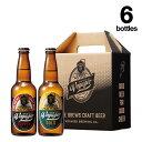 【ふるさと納税】B-14 田辺市唯一のクラフトビール2種類6本セット