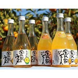 【ふるさと納税】紀州産みかんジュースと南高梅のジュースセット 500ml×6本
