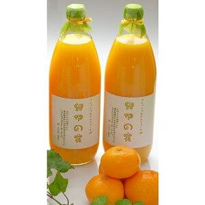 【ふるさと納税】温州みかんジュース2本セット 100% ストレート