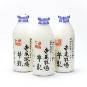 【ふるさと納税】寺尾牧場のこだわり濃厚牛乳(ノンホモ牛乳)3本セット(900ml×3本)