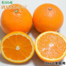 【ふるさと納税】有田産清見オレンジ10kg(M〜3Lサイズおまかせ)ご家庭用※2021年2月上旬〜3月下旬頃に順次発送予定